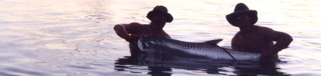 A nice tarpon caught and released with Captain Alex Regan