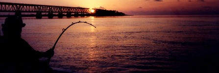 Fishing for tarpon at the Bahia Honda bridge in the Florida Keys